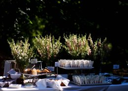 Outdoor Buffet Table