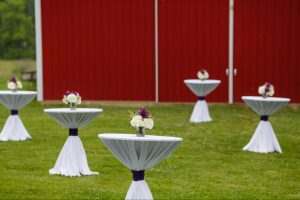 Rental Tables at Outdoor Company Picnic